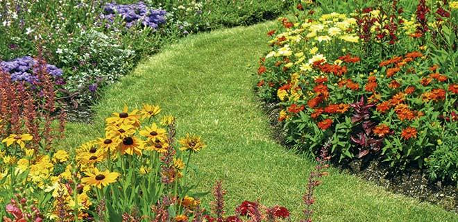 Universal plantejord